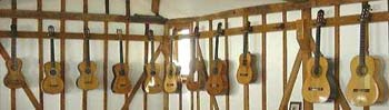 some of the guitars in the collection
